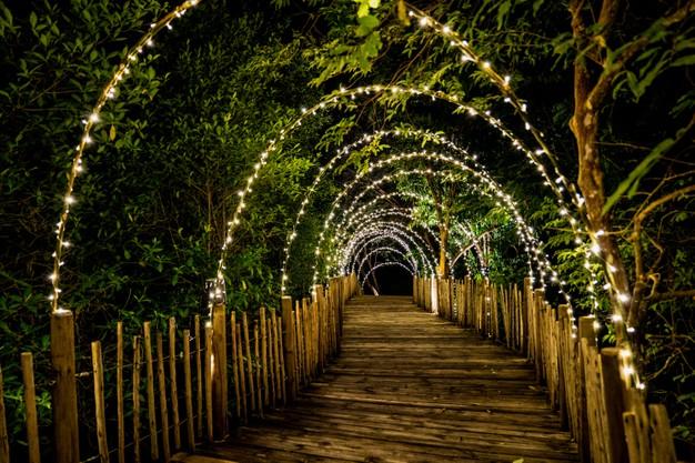 Κήπος: 5  Ιδέες για να τον κάνετε ακόμα πιο εντυπωσιακό